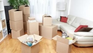 Packers and Movers Haridevpur