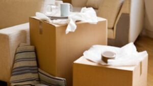 Packers and Movers Newtown