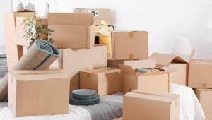 Packers and Movers Santoshpur